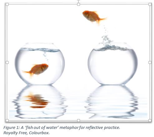 Figure 1 A 'fish out of water' metaphor for reflective practice. Royalty Free, Colourbox